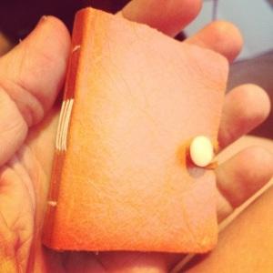 Mini-journal