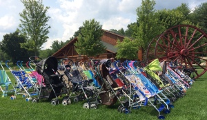 Strollers ready for riders (Photo: CKirgiss)